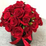 فروش عمده گل شاخه بریده رز قرمز